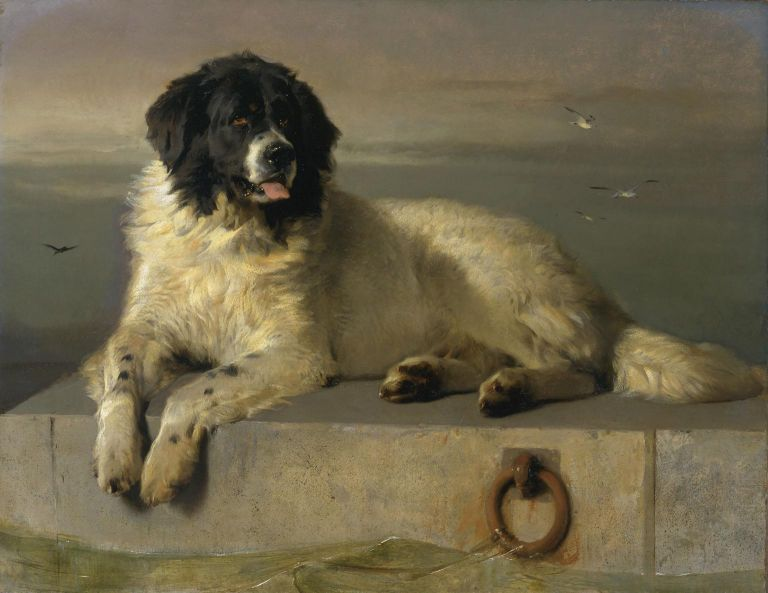O ζωγράφος που αγαπούσε τα σκυλιά | tovima.gr