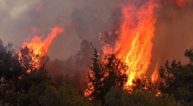 Φωτιά στα Γεράνεια: Εκκενώνονται νέοι οικισμοί – Μήνυμα από το 112   tovima.gr
