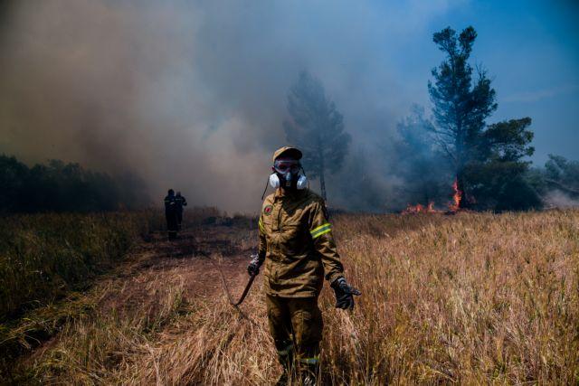 Φωτιά στην Κορινθία: «Μέχρι το βράδυ θα έχει οριοθετηθεί» λέει ο αρχηγός της Πυροσβεστικής | tovima.gr