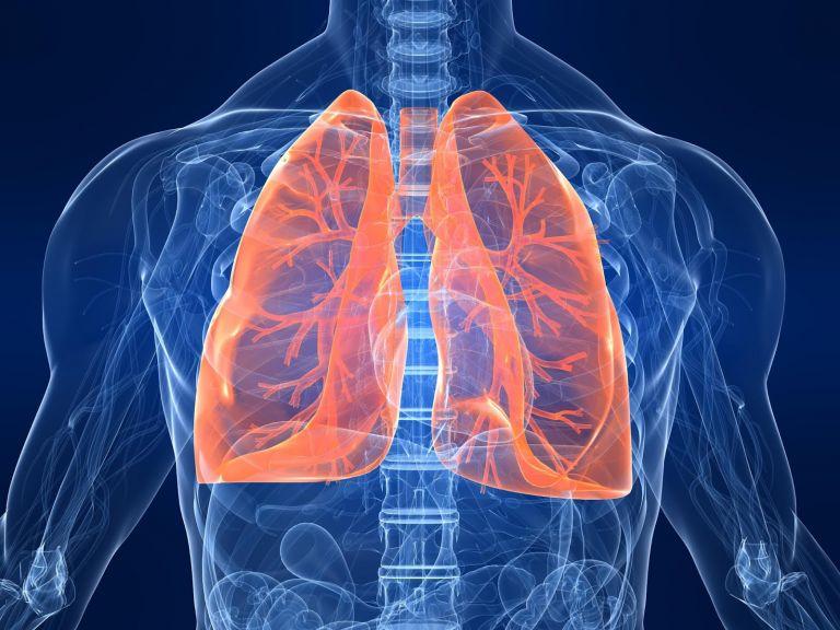 Κορωνοϊός : Πιθανή η πνευμονική ίνωση σε νοσούντες | tovima.gr