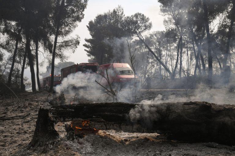 Γεράνεια Όρη: Σε ύφεση η πυρκαγιά, παραμένουν διάσπαρτες εστίες – Απόγνωση στα αποκαΐδια για τους κατοίκους | tovima.gr