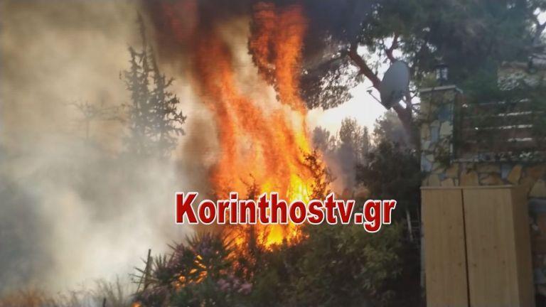 Υπό έλεγχο οι φωτιές σε Κορινθία και Φθιώτιδα | tovima.gr