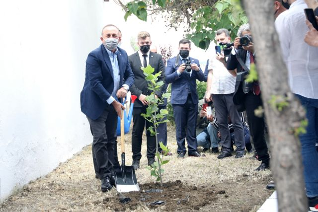 Πλατάνι στον τάφο του Αχμέτ Σαδίκ φύτεψε ο Τσαβούσογλου   tovima.gr