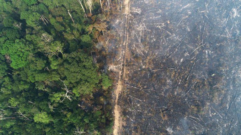 ΟΗΕ: Για τη σωτηρία του πλανήτη απαιτείται αποκατάσταση εκτάσεων στο μέγεθος της Κίνας | tovima.gr