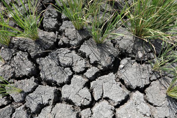 ΟΗΕ: Η ανθρωπότητα στα πρόθυρα των κατακλυσμιαίων επιπτώσεων της κλιματικής αλλαγής   tovima.gr