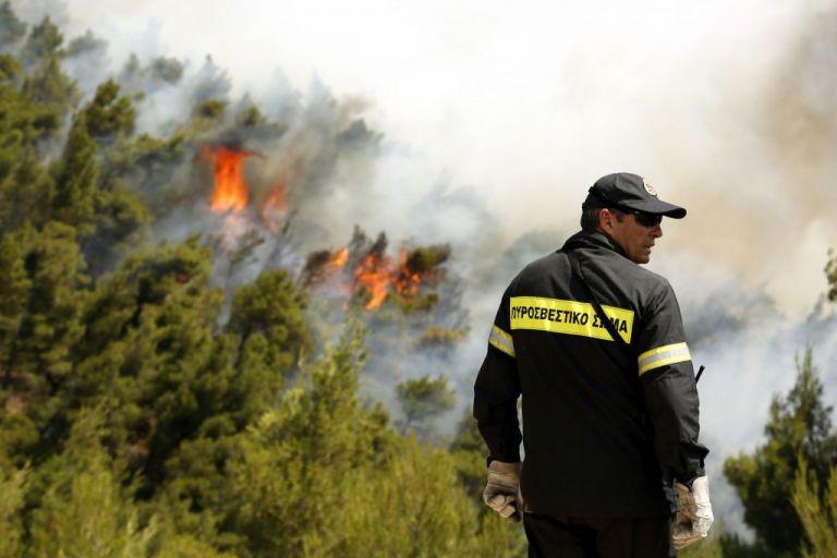 Φωτιά στην Κεφαλονιά-Καίει δασική έκταση | tovima.gr