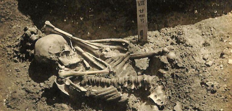 CSI Προϊστορία: Σκελετός 3.000 ετών φέρει σημάδια επίθεσης από καρχαρία | tovima.gr