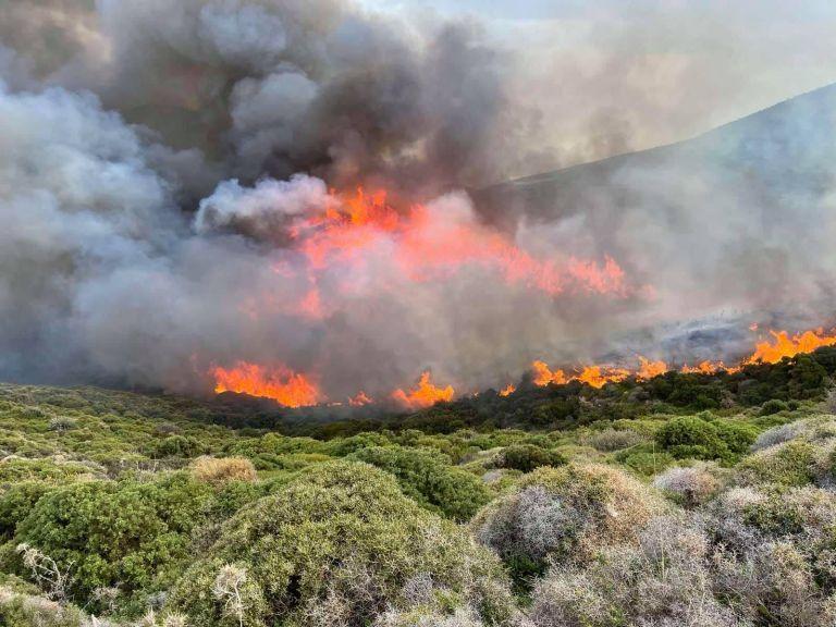 Φωτιά ΤΩΡΑ στη Μονεμβασιά – Στη μάχη και εναέρια μέσα   tovima.gr