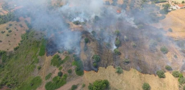 Πύρινα μέτωπα : Υπό έλεγχο η φωτιά στον Ωρωπό – Ενισχύονται οι δυνάμεις στην Κεφαλονιά   tovima.gr