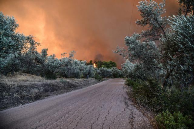 Πυροσβεστική: 68 δασικές πυρκαγιές στη χώρα το τελευταίο 24ωρο | tovima.gr