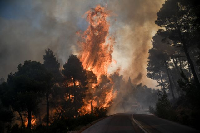 Εβρος: Ολονύχτια μάχη με τις φλόγες | tovima.gr