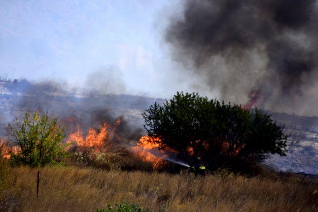 Φωτιά στη Χασιά | tovima.gr