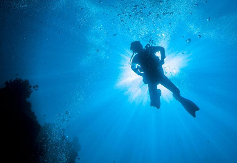 Diving tourism council formed | tovima.gr