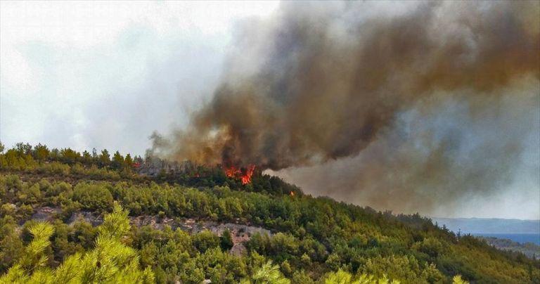 Πολύ υψηλός κίνδυνος πυρκαγιάς σε περιοχές της Πελοποννήσου και της Κρήτης   tovima.gr