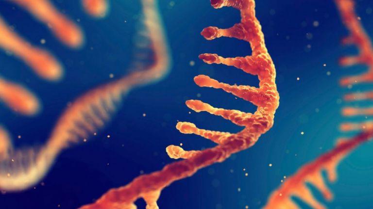 Κορωνοϊός: Βλάβες σε  αγγεία και αίμα για το 25% των νοσούντων – Τι δείχνει νέα έρευνα | tovima.gr