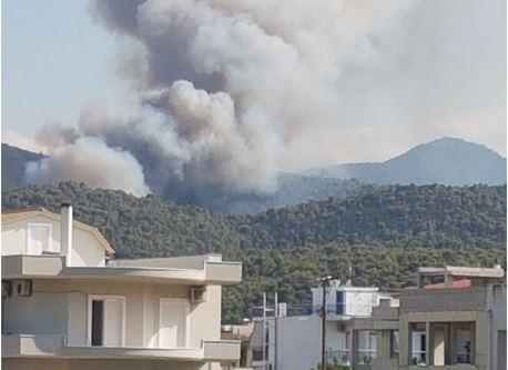 Φωτιά στην Άνω Αλμυρή Κορινθίας: Ανεξέλεγκτη η κατάσταση – Μεταβαίνει ο αρχηγός της Πυροσβεστικής   tovima.gr