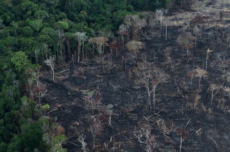 Ο Αμαζόνιος στα πρόθυρα ασφυξίας   tovima.gr