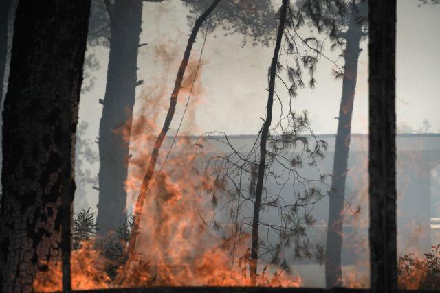 Έκτακτη ενημέρωση Χαρδαλιά στις 17:15 για τη φωτιά σε Σταμάτα, Ροδόπολη και Διόνυσο   tovima.gr