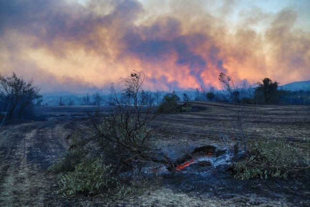 Τουρκία: Ένας νεκρός από τη δασική πυρκαγιά που μαίνεται για δεύτερη ημέρα στα νότια της χώρας | tovima.gr