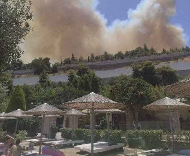 Συναγερμός για τη φωτιά στην Αχαΐα – Οδηγοί προσπαθούν να φύγουν από τις παραλίες   tovima.gr