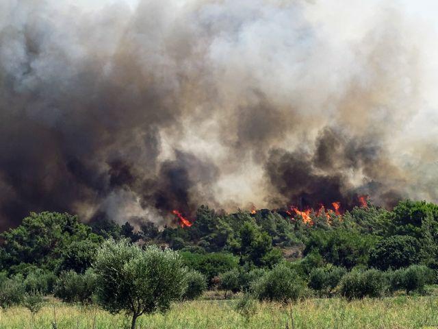 Ρόδος – Σε ύφεση η φωτιά – Φόβοι από τις αναζωπυρώσεις   tovima.gr