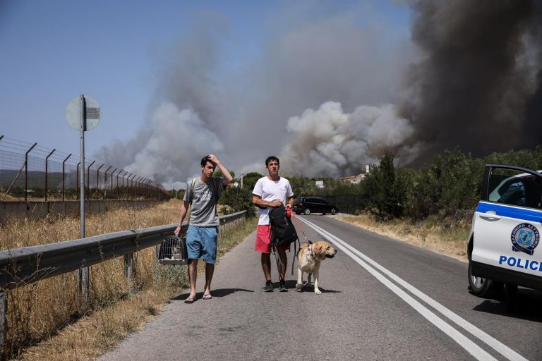 Φωτιά Βαρυπόμπη – Συγκινούν οι προσπάθειες πυροσβεστών και κατοίκουν να σώσουν ζωάκια της περιοχής | tovima.gr