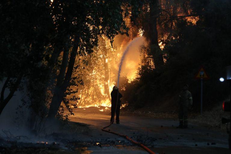 Χαρδαλιάς – 40 ενεργά μέτωπα σε όλη την Ελλάδα – 520 πυροσβέστες στη φωτιά στη Βαρυμπόμπη | tovima.gr