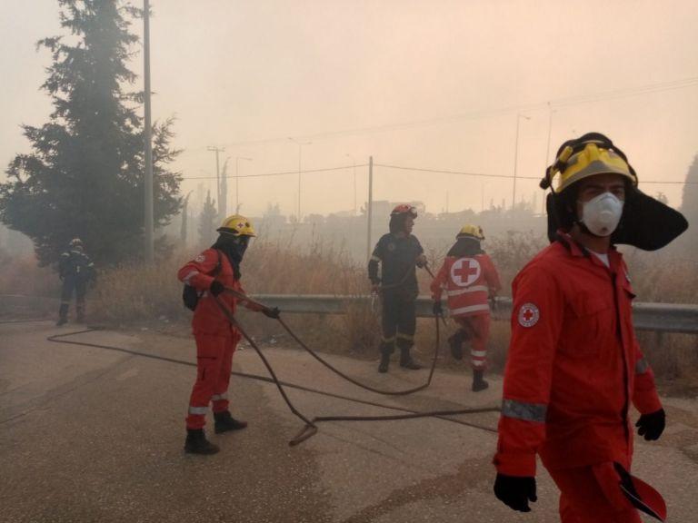 Συγκέντρωση τροφίμων και χρημάτων για τα θύματα της πυρκαγιάς | tovima.gr