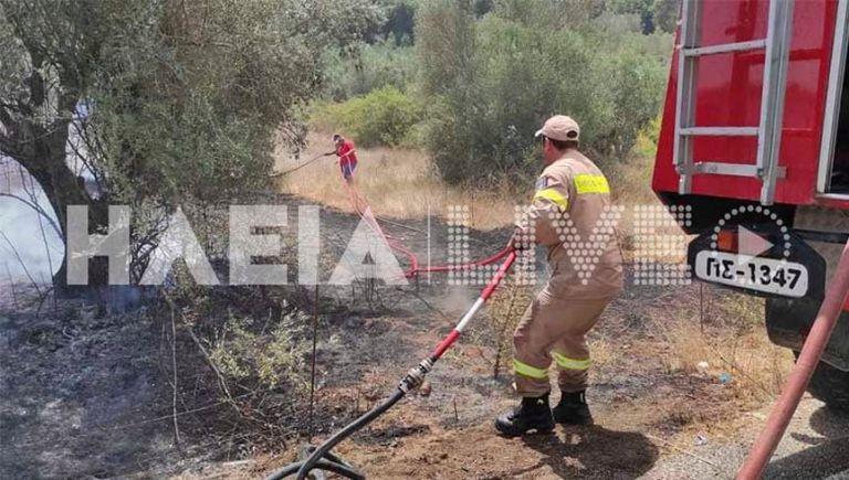 Φωτιές στην Ηλεία – Εστίες σε Πύργο και Αρχαία Ολυμπία | tovima.gr