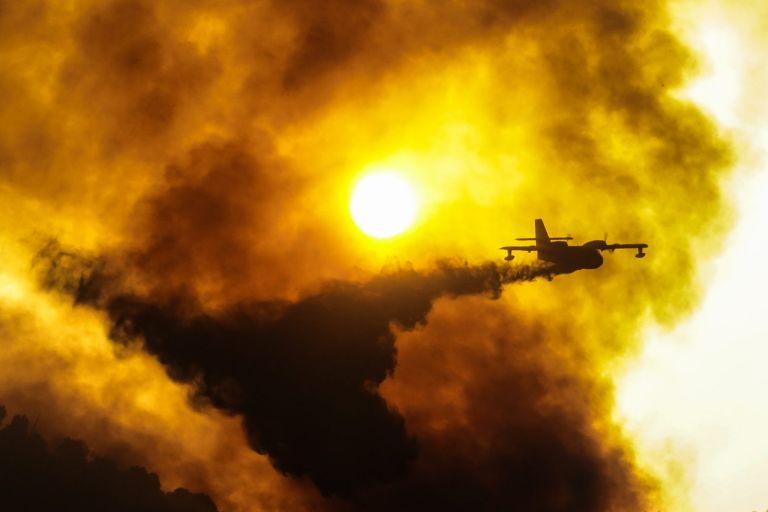 Φωτιές – Μάχη με το χρόνο και τις φλόγες σε Εύβοια και Ηλεία – Ερχονται δυνατοί άνεμοι τις επόμενες ώρες   tovima.gr
