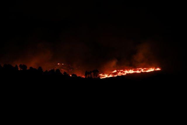 Φωτιά στη Φωκίδα – Συγκλονιστικά βίντεο από τη φωτιά στα χωριά Ελαία και Καλλιθέα | tovima.gr