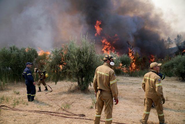 Νέο πύρινο μέτωπο στην Ηλεία – Πυρκαγιά στη Ζαχάρω | tovima.gr