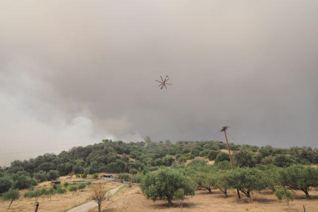 Σε κατάσταση εκτάκτου ανάγκης η Λίμνη Εύβοιας – Στα 100 μέτρα από τις Κεχριές οι φλόγες | tovima.gr
