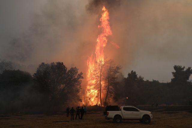 Φωτιές – Συλλήψεις για εμπρησμό σε Φωκίδα, Καλαμάτα και Κρυονέρι   tovima.gr