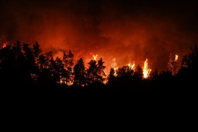 Περιφερειάρχης Στερεάς Ελλάδας – «Η κατάσταση είναι άνευ προηγουμένου, η φωτιά τρέχει πολύ γρήγορα»   tovima.gr