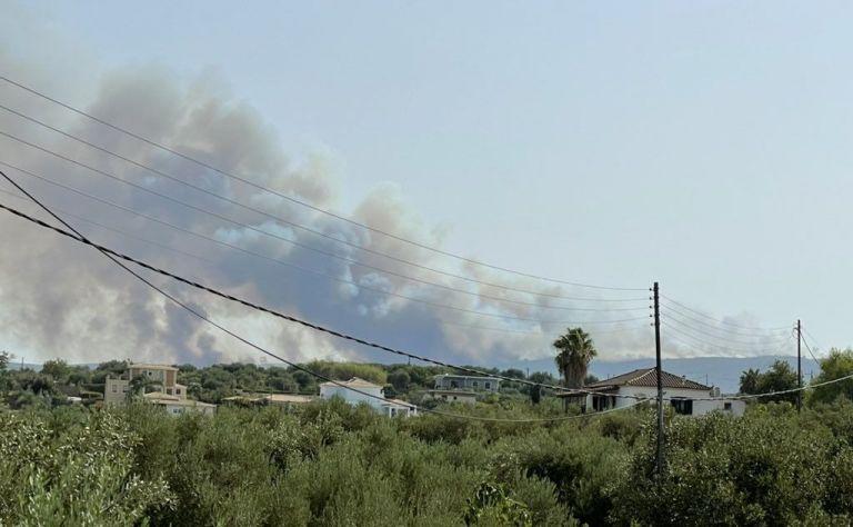 Φωτιά στην Ανατολική Μάνη – Μάχη με τις φλόγες για να μη μπει η φωτιά στο Γύθειο | tovima.gr