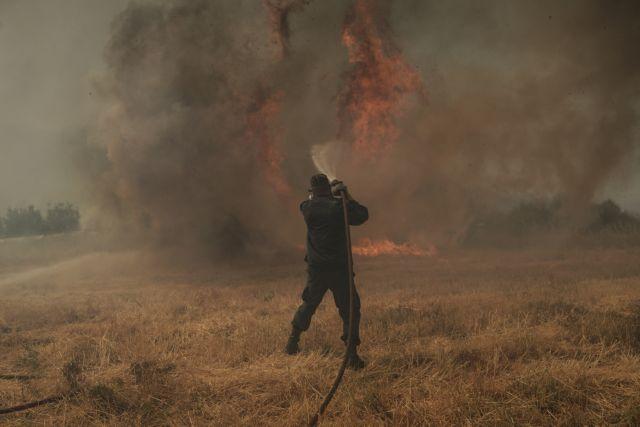 Σε εξέλιξη τρεις φωτιές στην Ήπειρο – Εκκενώνεται ο Μύτικας Άρτας | tovima.gr