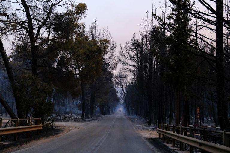 Φωτιά στην Αττική – Κάηκε το Κτήμα στο Τατόι – Ξέφυγε η φωτιά τη δεύτερη μέρα   tovima.gr