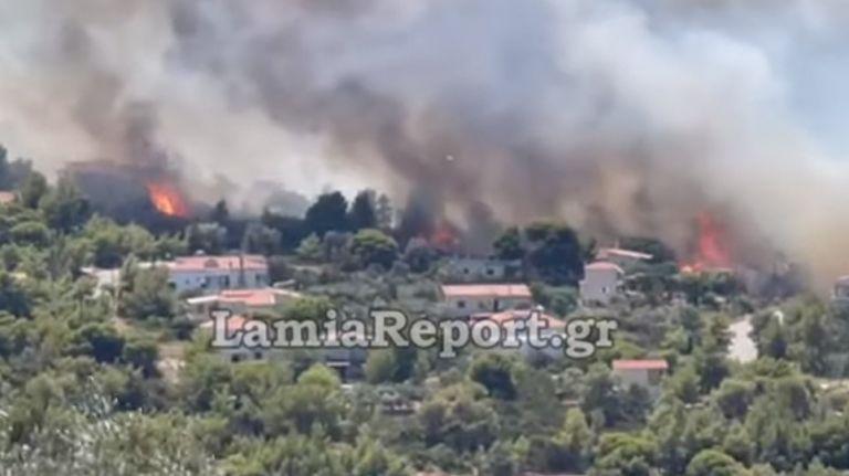 Φωτιά στη Φθιώτιδα – Κάηκαν σπίτια στον Θεολόγο | tovima.gr