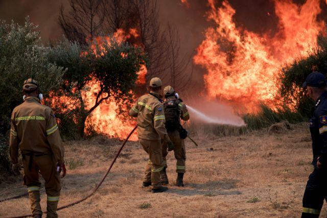 Φωτιά στην Ηλεία – Αναζωπύρωση στη Νεμούτα – Νέο μέτωπο απειλεί το χωριό | tovima.gr