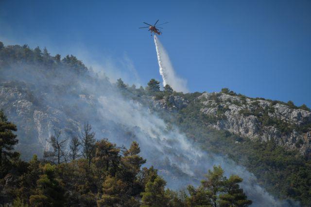 Φωτιά στην Εύβοια: Οι φλόγες καίνε τα πάντα στην Ιστιαία   tovima.gr