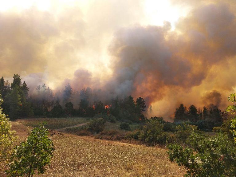 Φωτιά στην Εύβοια – 30 πολίτες επιβιβάστηκαν σε τουριστικό σκάφος – Σε ετοιμότητα το Λιμενικό για τα Βασιλικά | tovima.gr