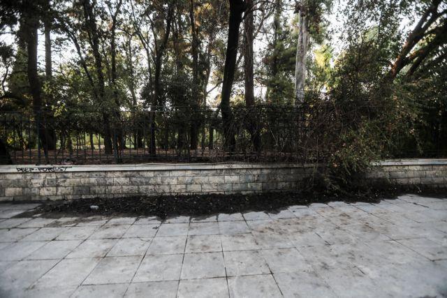Εμπρησμός στο Πεδίον του Άρεως – Ποια είναι η γυναίκα που διώκεται ποινικά   tovima.gr