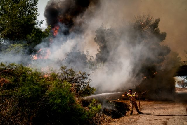 Φωτιές – Τα αίτια και οι παραλείψεις που οδήγησαν στην καταστροφή – Τι θα έπρεπε να έχει γίνει | tovima.gr