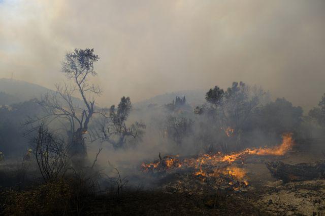 Λέκκας – Περίπου 500.000 στρέμματα καταστράφηκαν – Ο Αύγουστος θα είναι εφιαλτικός | tovima.gr