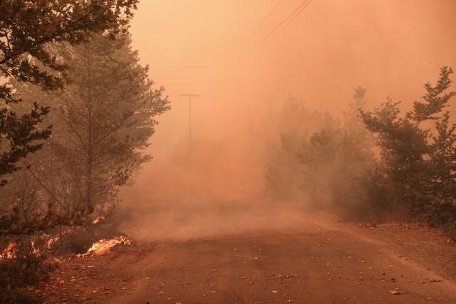 Φωτιά στην Εύβοια – Ανεξέλεγκτο το μέτωπο στο χωριό Τρούπι – Κινδυνεύουν και τα Ήλια | tovima.gr