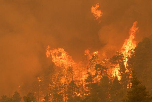 Δήμαρχος Ιστιαίας στο MEGA – «Με αυτά τα μέσα πυρόσβεσης είναι αδύνατο να σβήσουμε αυτή την πυρκαγιά – τέρας» | tovima.gr