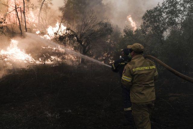 Φωτιά στη Μάνη – Στην ορεινή Δεσφίνα το μέτωπο   tovima.gr