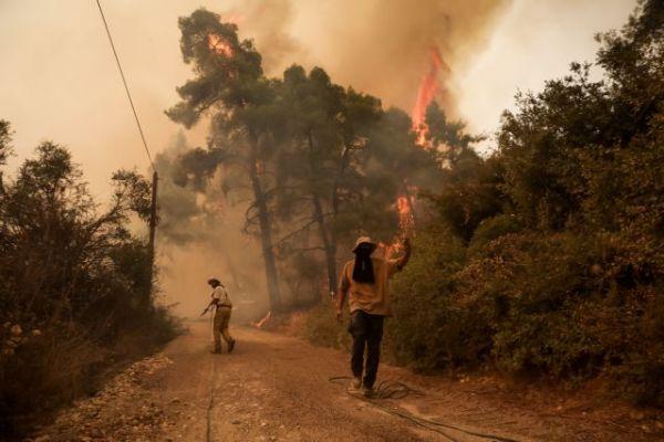 Φωτιά στην Εύβοια – Η βιβλική καταστροφή μέσα από τον φωτογραφικό φακό   tovima.gr