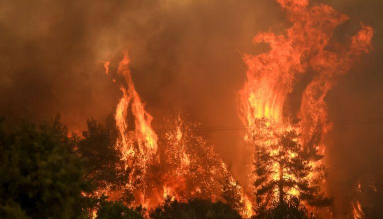 Εύβοια – Αναζωπύρωση στο Αρτεμίσιο – Μάχη για να μην μπει η φωτιά στο χωριό   tovima.gr